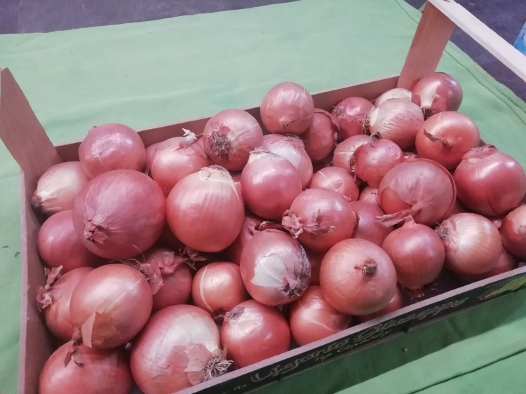Cipolle dorate €